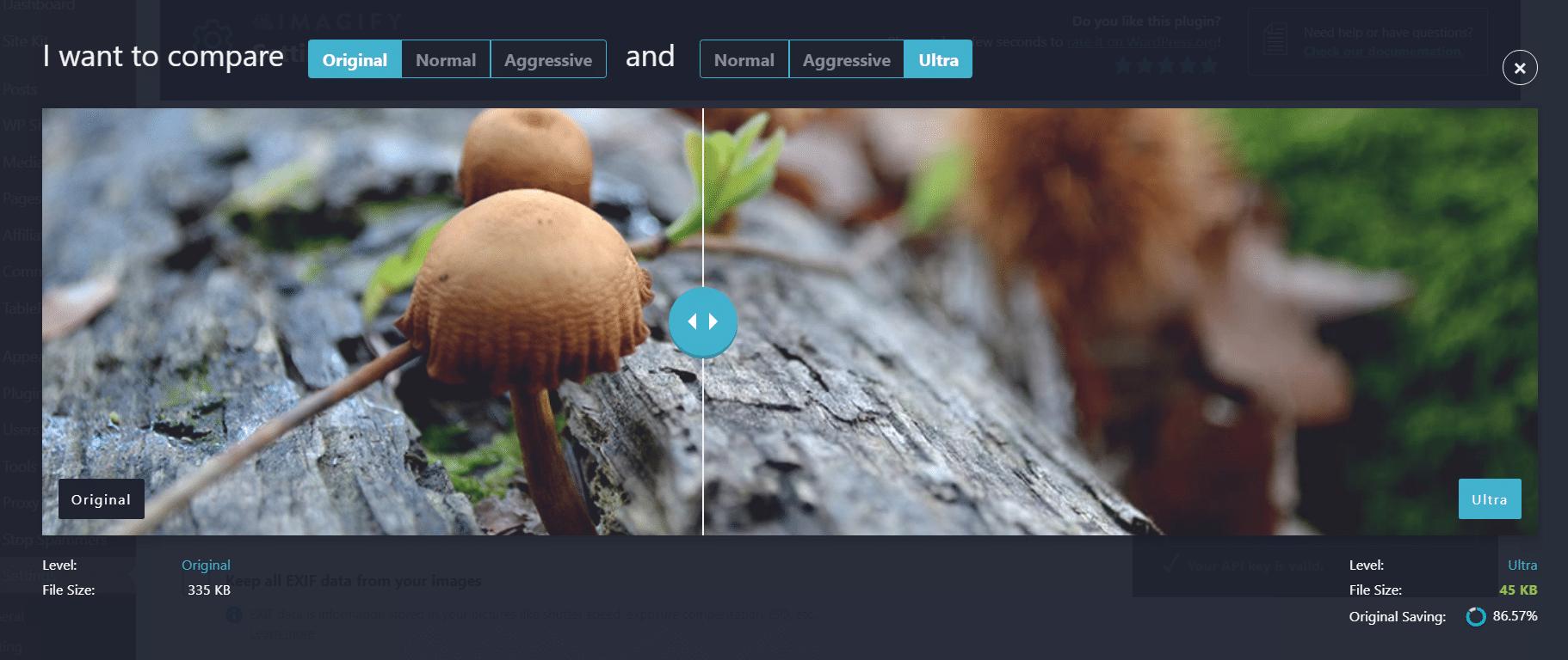 website image optimization - image optimizer